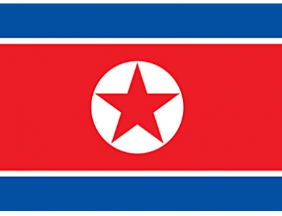 North Korea banner